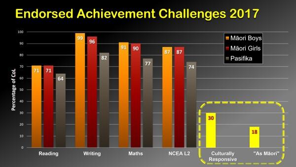 Endorsed achievement challenges 2017.jpg