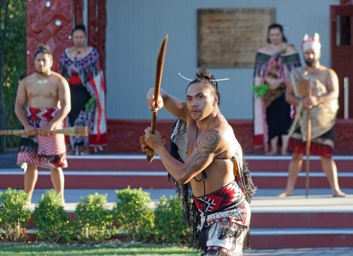 maori-2151594_960_720